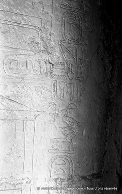 [NB080-1973-21] Saqqara - Mastaba de Meryteti : Cartouches de Meryteti dont l'un a été modifié en Pepyankh (Chambre C4, mur Nord)