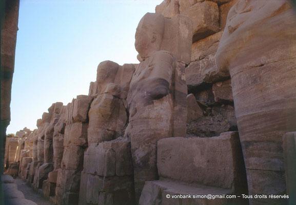 [082-1973-26] Karnak - Ouadjyt : Colosses de Thoutmôsis Ier adossés au pylône IV