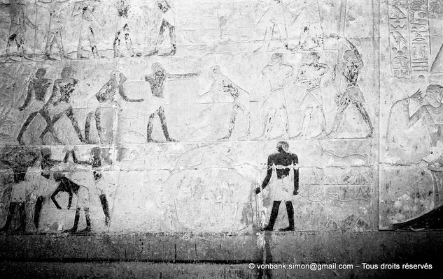 [NB085-1981-15] Saqqara - Mastaba de Mererouka : Registres dévolus à des scènes d'agriculture (Chambre A13, mur Est)