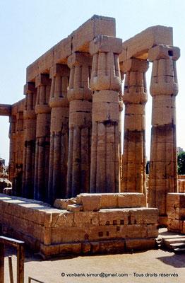 [089-1973-05] Louxor - Temple d'Amon-Rê : Double rangée de colonnes papyriformes fasciculées et cannelées (Aménophis III)