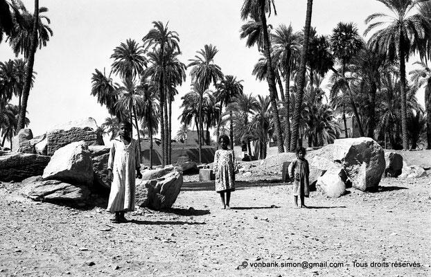 [NB070-1973-32] Karnak - Propylées du Sud : Dromos extérieur, dans l'axe du pylône X  (vue partielle)