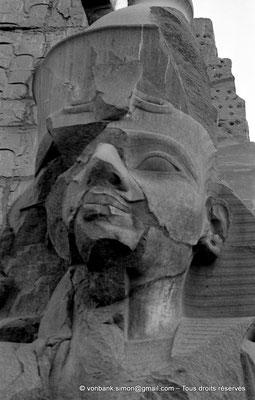 [NB074-1973-74] Louxor - Temple d'Amon-Rê : Tête de la statue de Ramsès II devant le pylône
