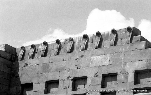 [NB085-1981-65] Saqqara - Djoser : Partie haute du mur aux cobras