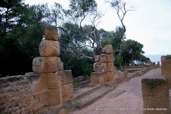 [073-1978-32] Tipasa de Maurétanie : Etablissement industriel (?) donnant sur le cardo