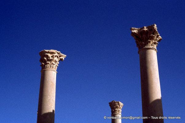 [010-1978-15] Timgad (Thamugadi) : Colonnes du forum (détail)