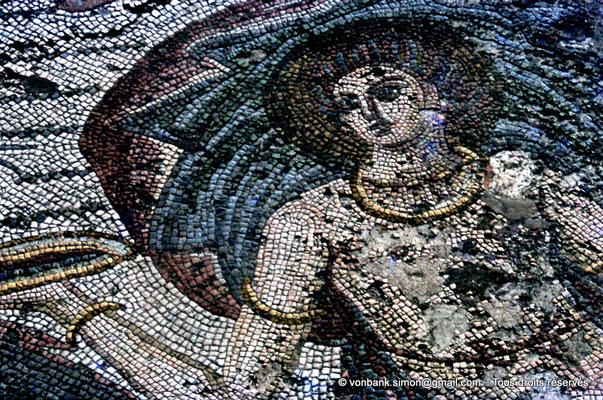 [072-1978-05] Annaba (Hippo Regius) : Partie centrale de la mosaïque du triomphe d'Amphitrite