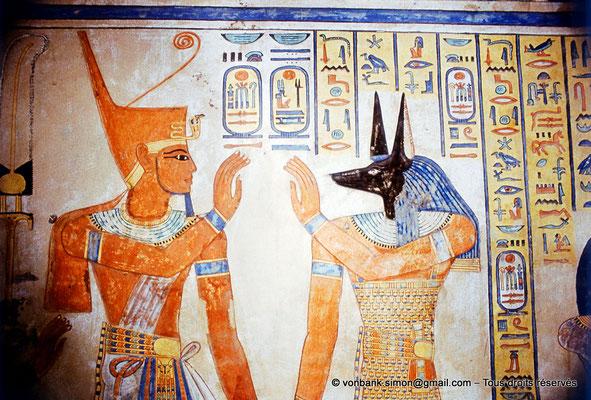 [080-1981-48] QV 55 Amonherkhépshef : Ramsès III - Douamoutef