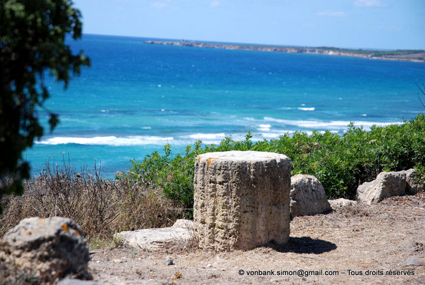 [NU904-2015-211] Tharros (Sardaigne) : Ruines (colline Su Muru Mannu)