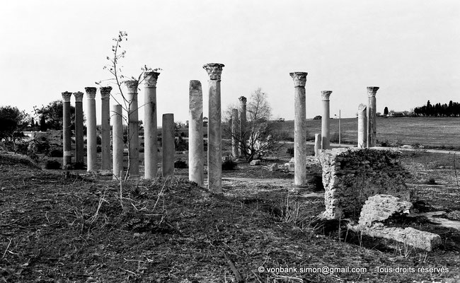 [NB016-1981-16] Carthage (Carthago) : Edifice à colonnes