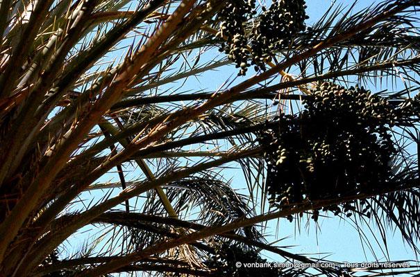[044-1978-16] El Oued