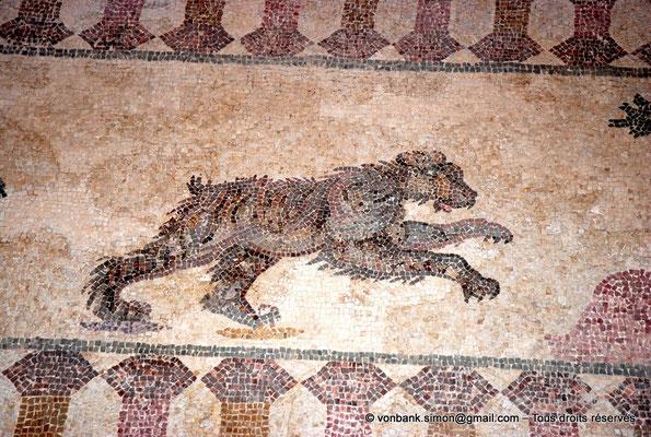 [NU900-2012-064] Paphos (Nea Paphos) : Villa de Dionysos - Scène de chasse - Ours [11]