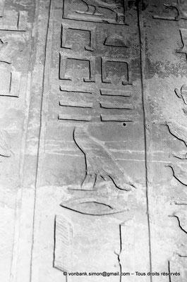 [NB080-1973-37] Saqqara - Mastaba de Mererouka : Détail d'un montant de la fausse porte (Chambre A8, mur Ouest)