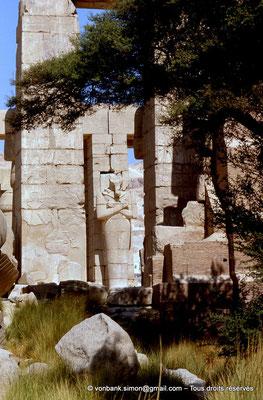 [069-1981-51] Ramesseum : Pilier osiriaque vu depuis la porte d'accès à la deuxième cour