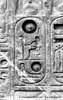 [NB079-1973-15] Louxor - Temple d'Amon-Rê : Cartouche pharaonique (titulature de Ramsès II)