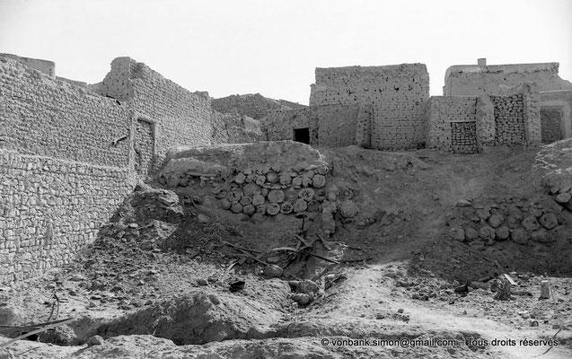 [NB093-1978-112] Temacine-Tamelhat - Fondations et troncs de palmiers