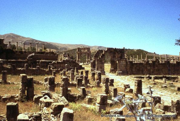 [070-1978-06] Djemila (Cuicul) : Arc de l'Est - En arrière-plan, l'arc de Caracalla (vue depuis la rue du théâtre)