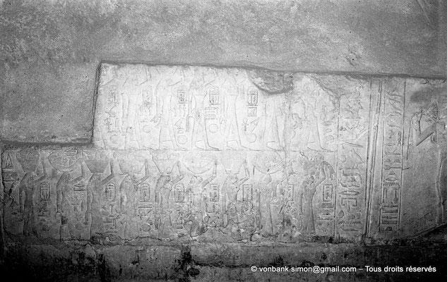 [NB085-1981-41] Saqqara - Mastaba de Mererouka : Des jeunes filles symbolisant des domaines des défunts leurs apportent des produits, soit sur la tête, soit à la main (Chambre A6, mur Sud)