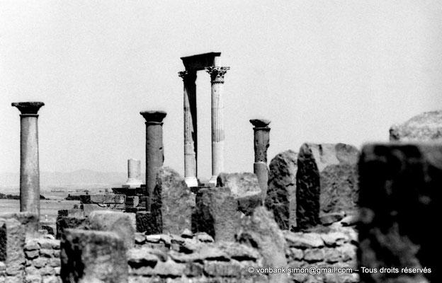 [NB091-1978-12] Timgad (Thamugadi) : Temple du Génie de le Colonie (Vue prise depuis le quartier de la maison de Julius Januarius)