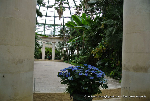 [NU900b-2012-0127] B - Bruxelles - Laeken : Serres royales - Jardin d'hiver
