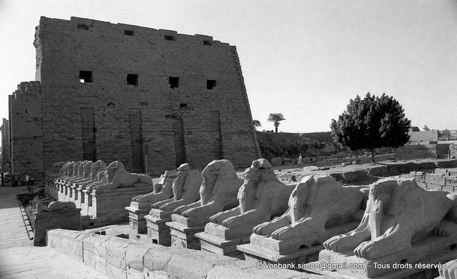 [NB077-1973-04] Karnak - Parvis du Temple : Dromos avec sphinx à tête de bélier - En arrière-plan, la porte et le môle Sud du premier pylône