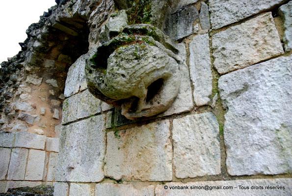 [NU904-2015-0068] 17 - Sainte-Gemme - Salle capitulaire : Cul-de-lampe représentant un Basilic situé au milieu du mur occidental