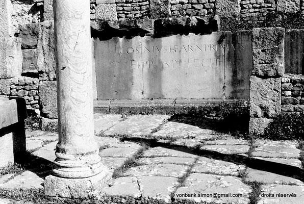 [AM-001_1971_04a] Djemila (Cuicul) : Marché de Cosinius - Dédicace : L(ucius) Cosinius L(uci) f(ilius) Arn(ensi) Primus / FL(amen) P(er)P(etuus) S(ua) P(ecunia) FECIT