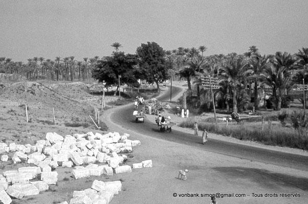 [088-1973-38] Karnak - Temple de Khonsou : Depuis la Porte Sud (Ptolémée III Evergète), vue sur les alentours extérieurs du complexe d'Amon-Ré