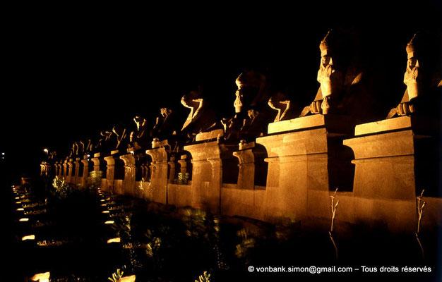 [081-1973-38] Karnak - Son et lumière : Parvis du Temple - Sphinx à tête de bélier (criocéphale) tenant entre leurs pattes une statue du pharaon