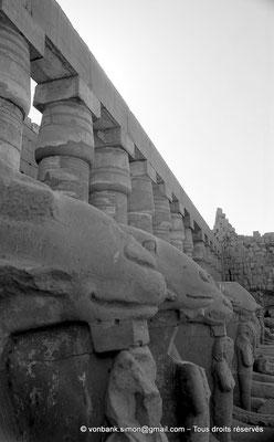 [NB077-1973-52] Karnak - Grande cour : Colonnade (Chechonq Ier) et rangée de sphinx à tête de bélier (Ramsès II)