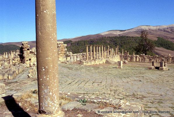 [001-1983-04] Djemila (Cuicul) : Place des Sévères (Nouveau forum) - Colonnade du portique Nord (vue prise depuis l'angle Sud-Ouest de la place)