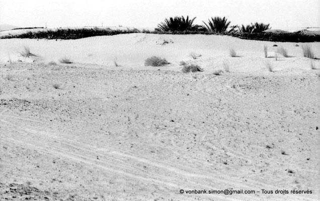[NB091-1978-16] El Oued