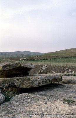 [003-1983-13] Ellès : Dolmens