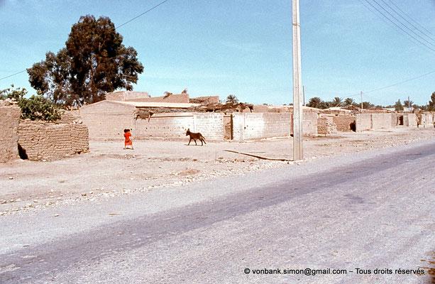[021-1979-06] Sidi Okba - Les abords