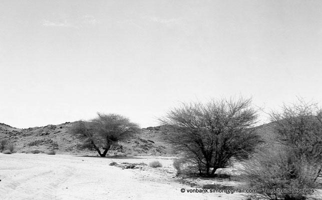 [NB102-1980-06] DZ - Tamanrasset - Hoggar