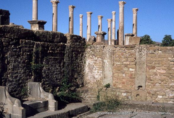 [010-1978-07] Timgad (Thamugadi) : Latrines publiques – En arrière-plan, les colonnes du forum