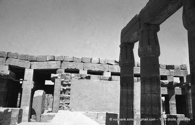 [NB078-1973-70] Karnak - Akh-Menou : Colonnes papyriformes à chapiteau fermé du jardin botanique - En arrière-plan, façade Est de l'Akh-Menou