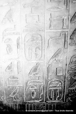 [087-1973-33] Saqqara - Ounas : Cartouches du pharaon