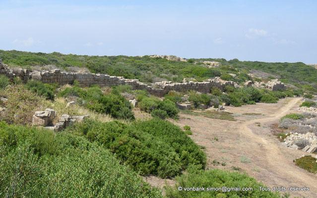 [NU906-2019-1514a] Sélinonte : Fortifications extérieures du côté Est (vue prise en direction du Nord)