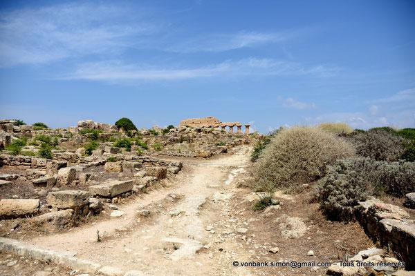 [NU906-2019-1481] Sélinonte : Quartier punique - En arrière-plan, ruines du temple C dédié à Apollon