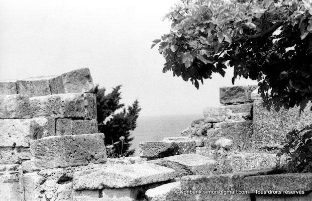[NB039-1978-20] Tipasa de Maurétanie : Basilique Sainte Salsa