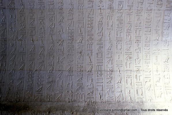 [067-1981-13] Saqqara : Textes des pyramides (détail)