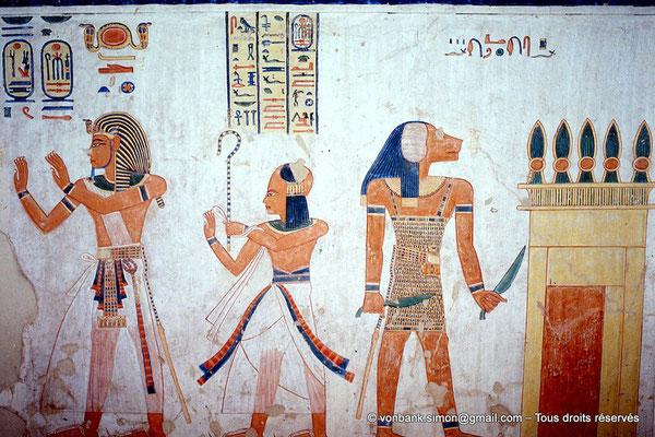 [066-1981-10] QV 44 Khaemouaset : Ramsès III - Khaemouaset - ?