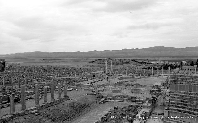 [NB022-1978-29] Timgad (Thamugadi) : Forum - Face Ouest : Curie et Temple de Trajan