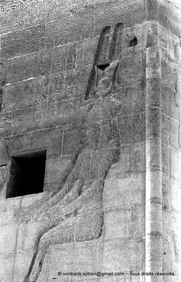 [NB076-1973-19] Philae : Temple d'Isis - Détail de la partie supérieure de la façade du Pylône 1
