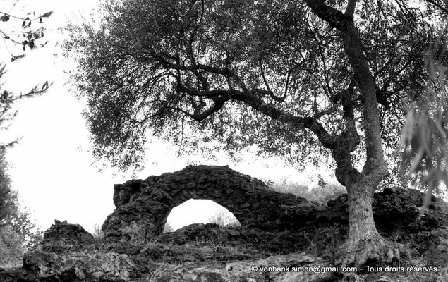 [NB039-1978-10] Tipasa de Maurétanie : Environs des temples
