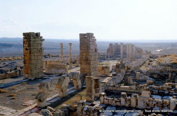 [007-1983-37] Haïdra (Ammaedara) : Église de l'évêque Melleus -Basilique I-