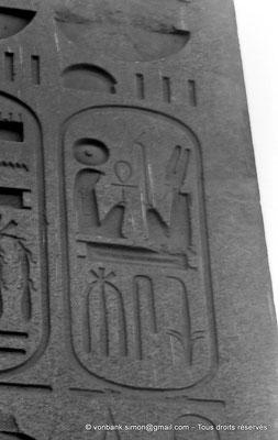 [NB074-1973-62] Louxor - Temple d'Amon-Rê : Cartouche pharaonique (titulature de Ramsès II - Obélisque)