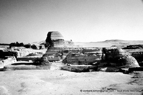 [083-1973-14] Gizeh - Grand sphinx : Le Sphinx fait face à l'Est (et aujourd'hui à la ville toute proche)