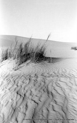 [NB091-1978-62] El Oued