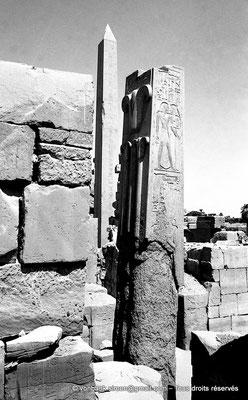 """[NB078-1973-62] Karnak - Ipet-Sout : Le """"lys"""", la plante héraldique de Haute-Égypte (Thoutmôsis III) - En arrière-plan l'obélisque d'Hatchepsout"""